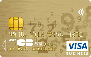 Visa Gold Business Class
