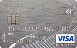 Visa Platinum Business